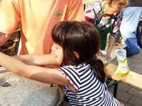 Podobe bistriških domačij in Frida znanstvenica